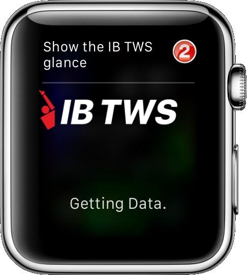 """Show IB TWS glance"" with Number Reference 2"